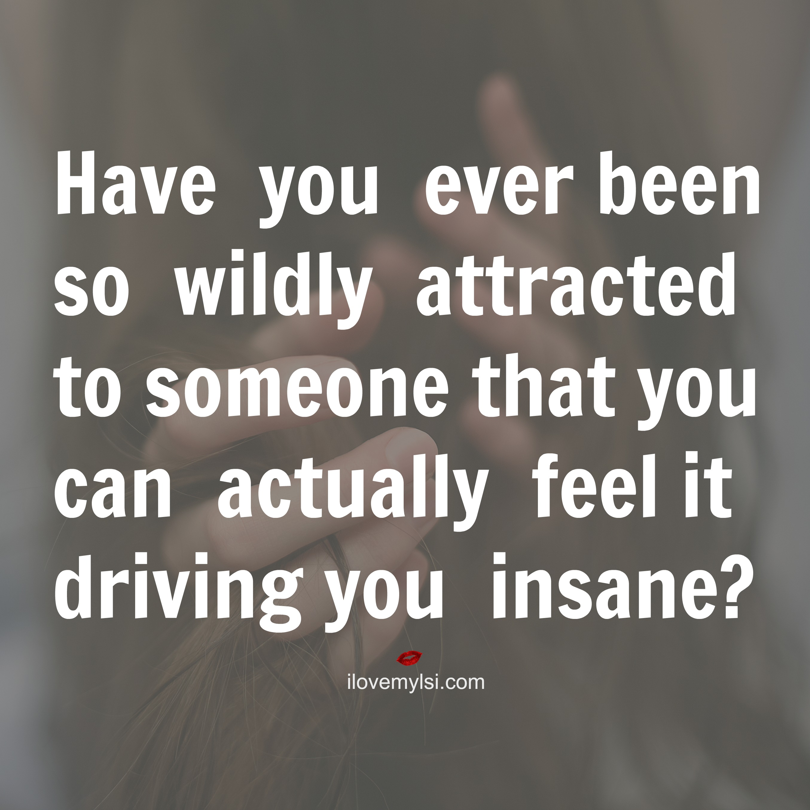 Love Attraction Quotes Wild Attraction Quotes Archives  I Love My Lsi